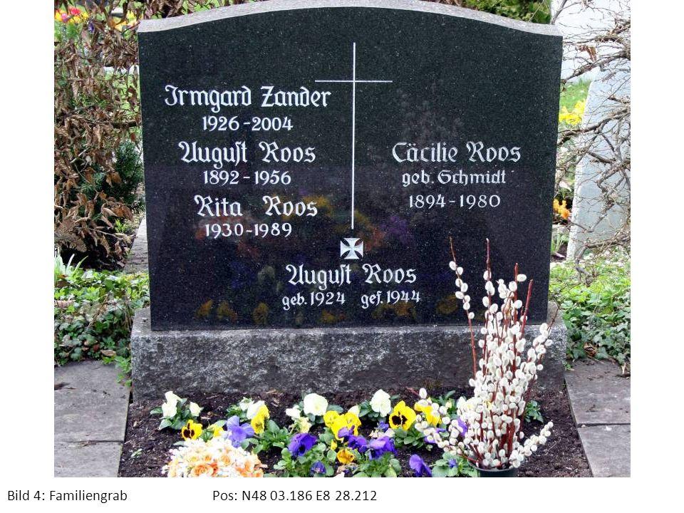Bild 5: Gedenkstein Donauschwaben (Friedhof)N48 03.137 E8 28.191