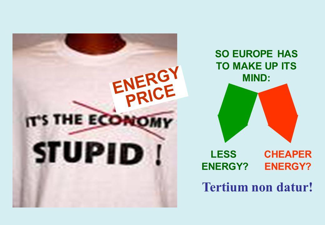 GBG © Dr. Görres – www.foes.de February 2007Marktwirtschaftliche Umweltpolitik – Bild 28 REMEMBER THE CLINTON CAMPAIGN OF 1996? ENERGY PRICE SO EUROPE