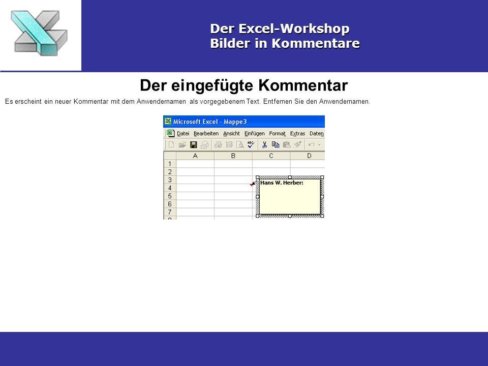 Der eingefügte Kommentar Der Excel-Workshop Bilder in Kommentare Es erscheint ein neuer Kommentar mit dem Anwendernamen als vorgegebenem Text.