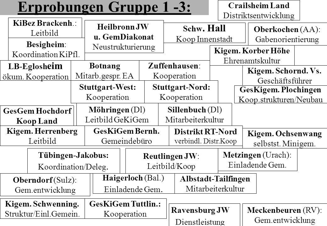 Erprobungen Gruppe 1 -3: Besigheim: Koordination KiPfl. KiBez Brackenh.: Leitbild Zuffenhausen: Kooperation Kigem. Herrenberg Leitbild Stuttgart-Nord:
