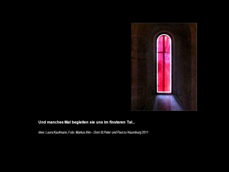 40 Und manches Mal begleiten sie uns im finsteren Tal... Idee: Laura Kaufmann, Foto: Markus Ihle – Dom St.Peter und Paul zu Naumburg 2011