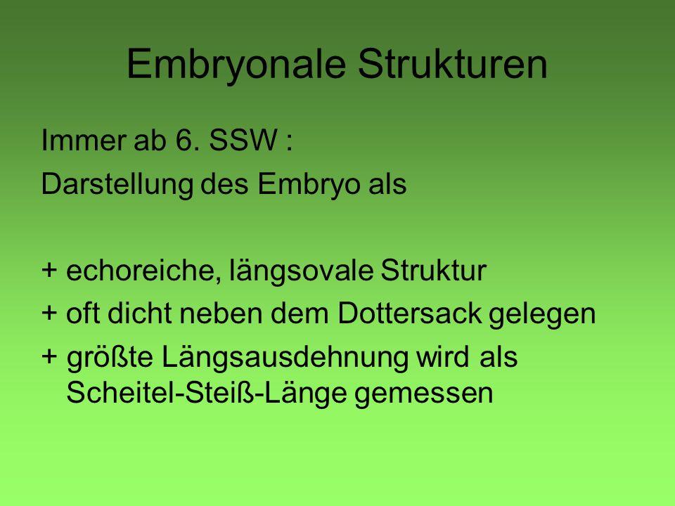 Embryonale Strukturen Immer ab 6. SSW : Darstellung des Embryo als +echoreiche, längsovale Struktur +oft dicht neben dem Dottersack gelegen + größte L