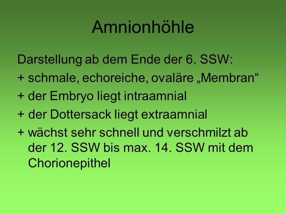 Amnionhöhle Darstellung ab dem Ende der 6. SSW: +schmale, echoreiche, ovaläre Membran +der Embryo liegt intraamnial + der Dottersack liegt extraamnial
