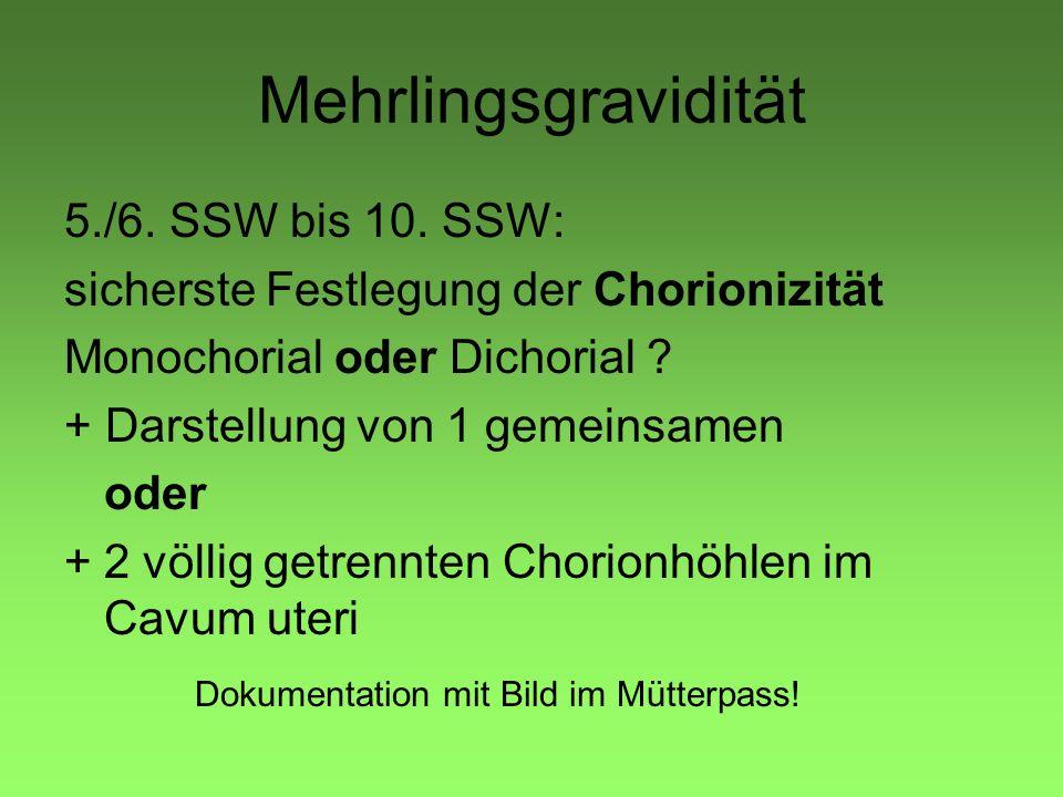 Mehrlingsgravidität 5./6. SSW bis 10. SSW: sicherste Festlegung der Chorionizität Monochorial oder Dichorial ? + Darstellung von 1 gemeinsamen oder +2