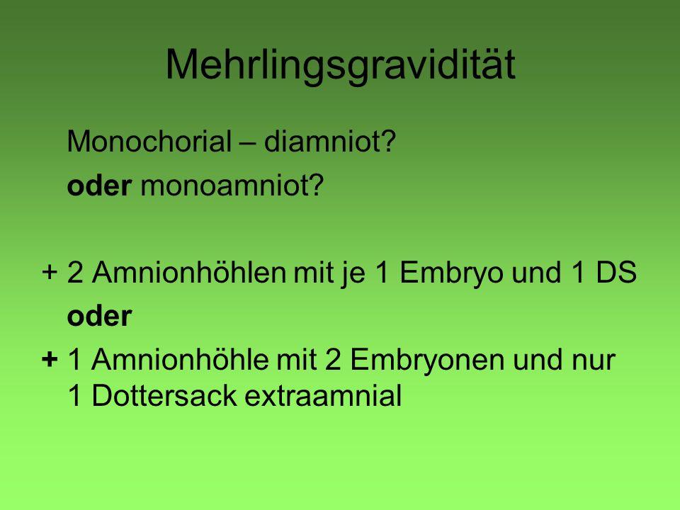 Mehrlingsgravidität Monochorial – diamniot? oder monoamniot? + 2 Amnionhöhlen mit je 1 Embryo und 1 DS oder +1 Amnionhöhle mit 2 Embryonen und nur 1 D