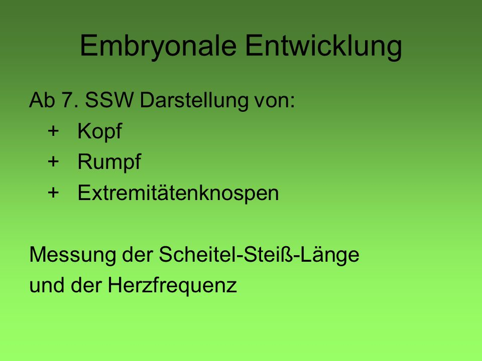 Embryonale Entwicklung Ab 7.