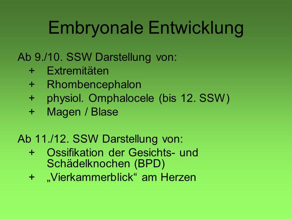 Embryonale Entwicklung Ab 9./10. SSW Darstellung von: + Extremitäten +Rhombencephalon +physiol. Omphalocele (bis 12. SSW) +Magen / Blase Ab 11./12. SS