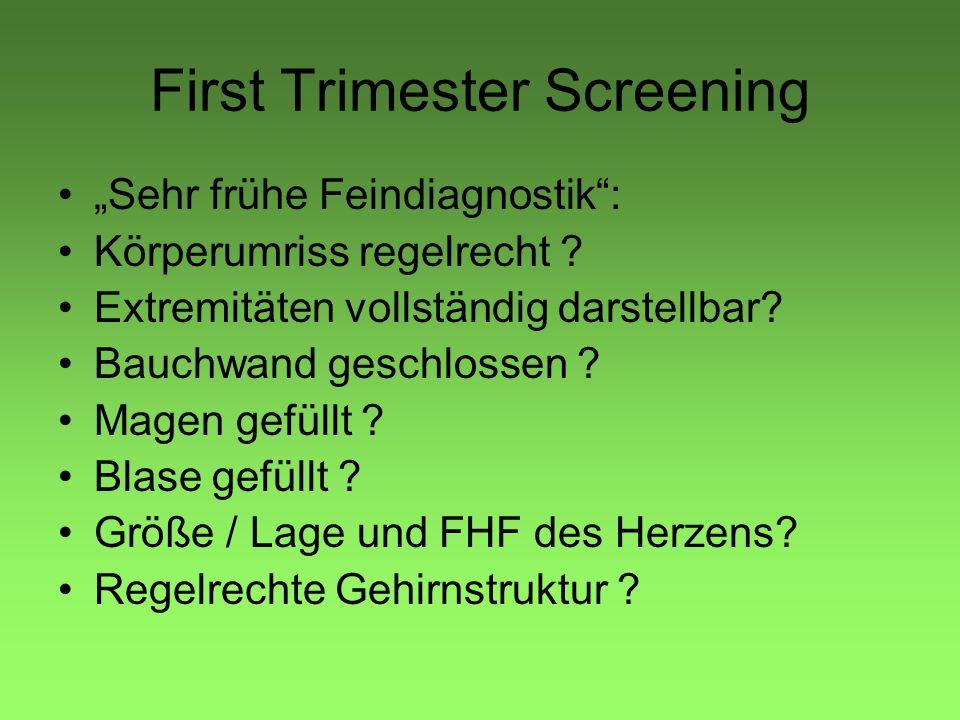 First Trimester Screening Sehr frühe Feindiagnostik: Körperumriss regelrecht .