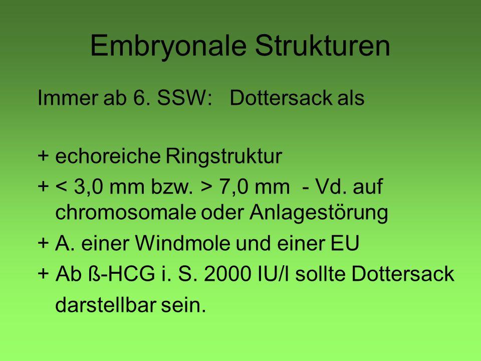 Embryonale Strukturen Immer ab 6. SSW: Dottersack als +echoreiche Ringstruktur + 7,0 mm - Vd. auf chromosomale oder Anlagestörung +A. einer Windmole u