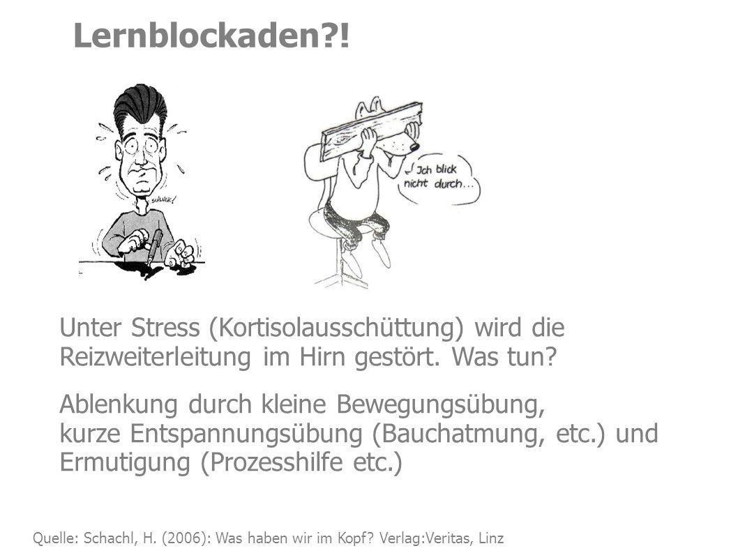 Lernblockaden?! Quelle: Schachl, H. (2006): Was haben wir im Kopf? Verlag:Veritas, Linz Unter Stress (Kortisolausschüttung) wird die Reizweiterleitung