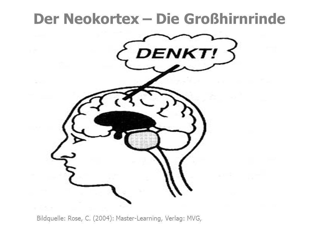 Das limbische System Beteiligte.