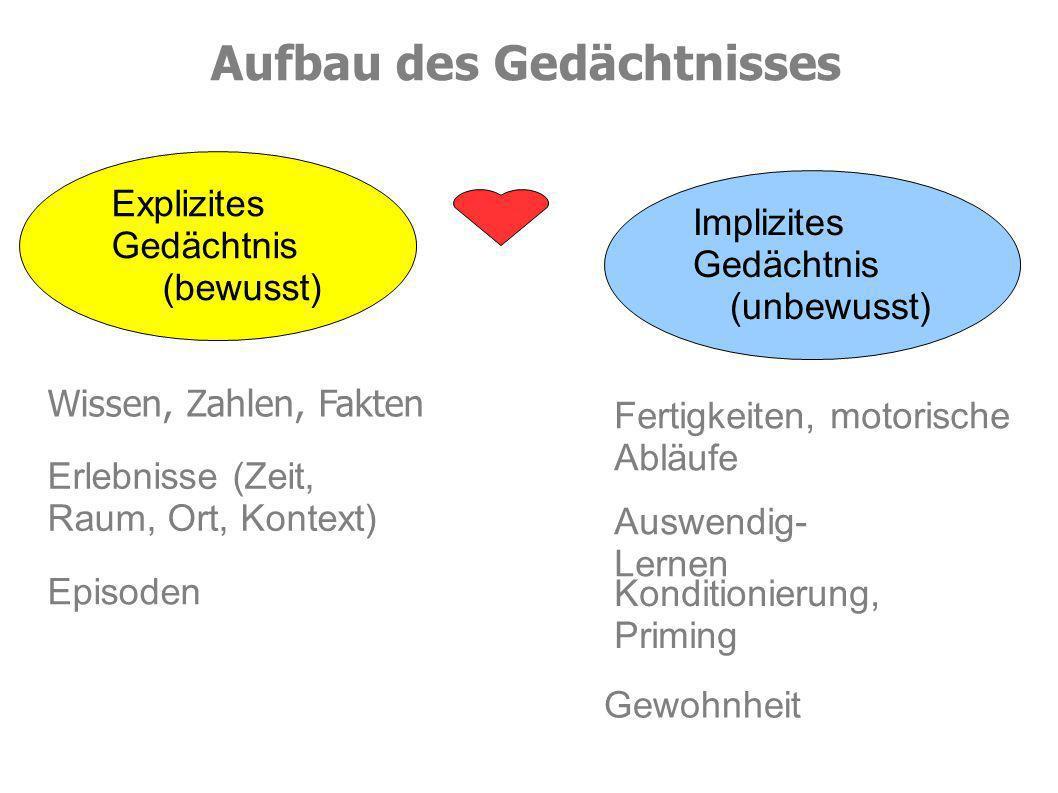 Lernblockaden?.Quelle: Schachl, H. (2006): Was haben wir im Kopf.