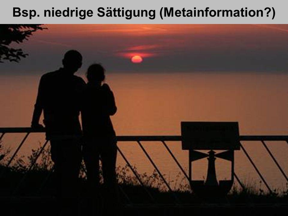 Bsp. niedrige Sättigung (Metainformation?) AkadDir W. Wagner. Didaktik der Chemie, Universität Bayreuth