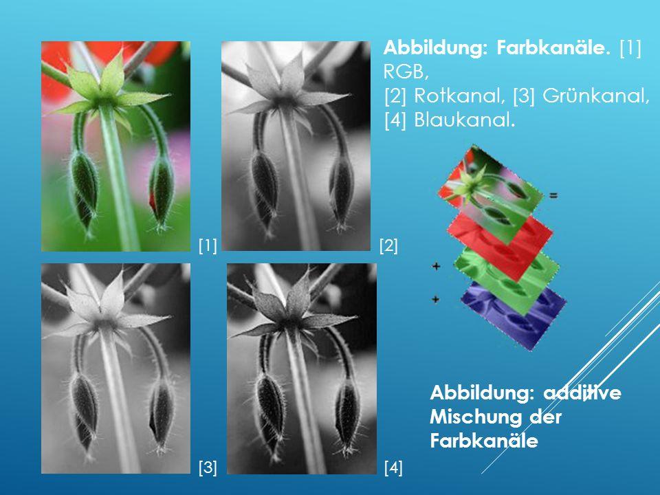 [1][2] [3][4] Abbildung: Farbkanäle.[1] RGB, [2] Rotkanal, [3] Grünkanal, [4] Blaukanal.