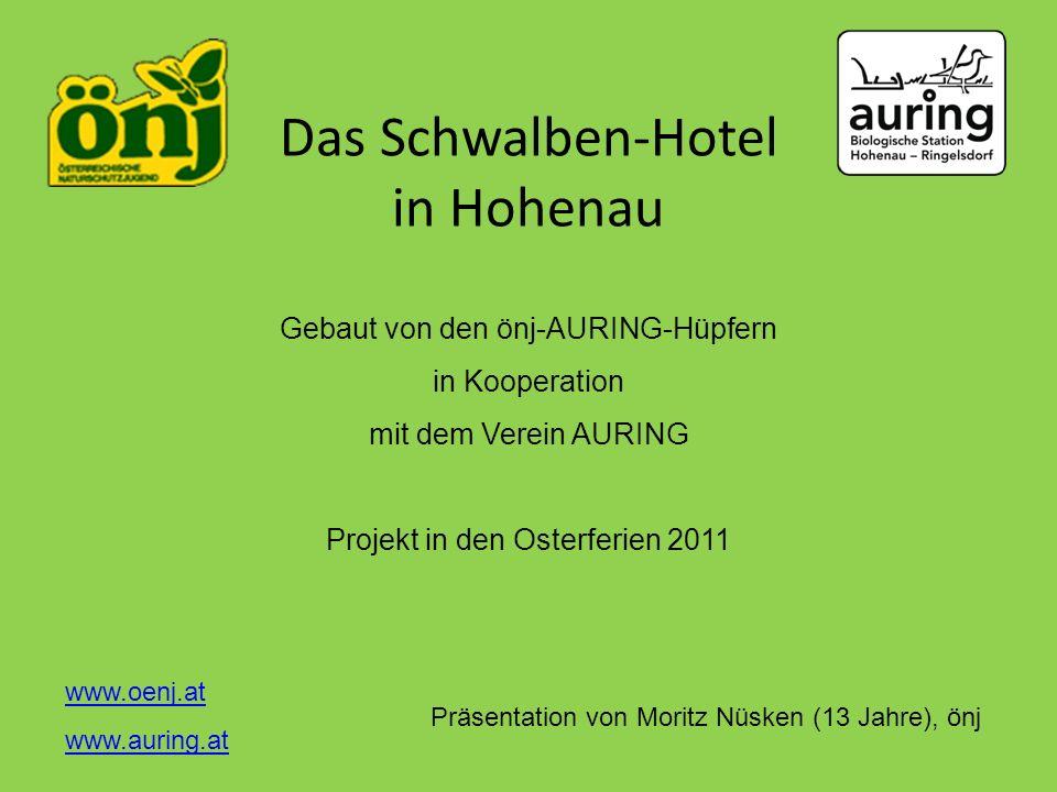 Das Schwalben-Hotel in Hohenau Gebaut von den önj-AURING-Hüpfern in Kooperation mit dem Verein AURING Projekt in den Osterferien 2011 Präsentation von
