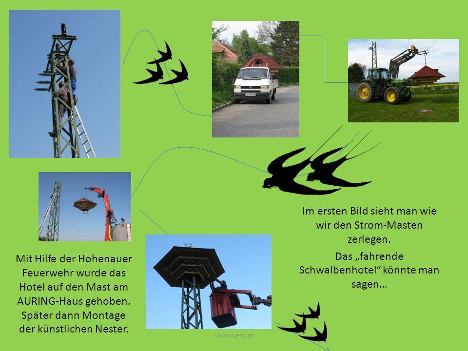 Im ersten Bild sieht man wie wir den Strom-Masten zerlegen. Das fahrende Schwalbenhotel könnte man sagen… www.oenj.at Mit Hilfe der Hohenauer Feuerweh