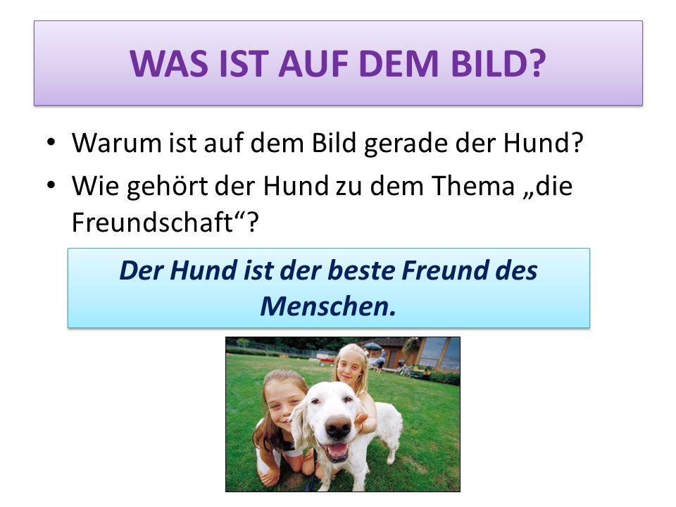 Warum ist auf dem Bild gerade der Hund? Wie gehört der Hund zu dem Thema die Freundschaft? WAS IST AUF DEM BILD? Der Hund ist der beste Freund des Men