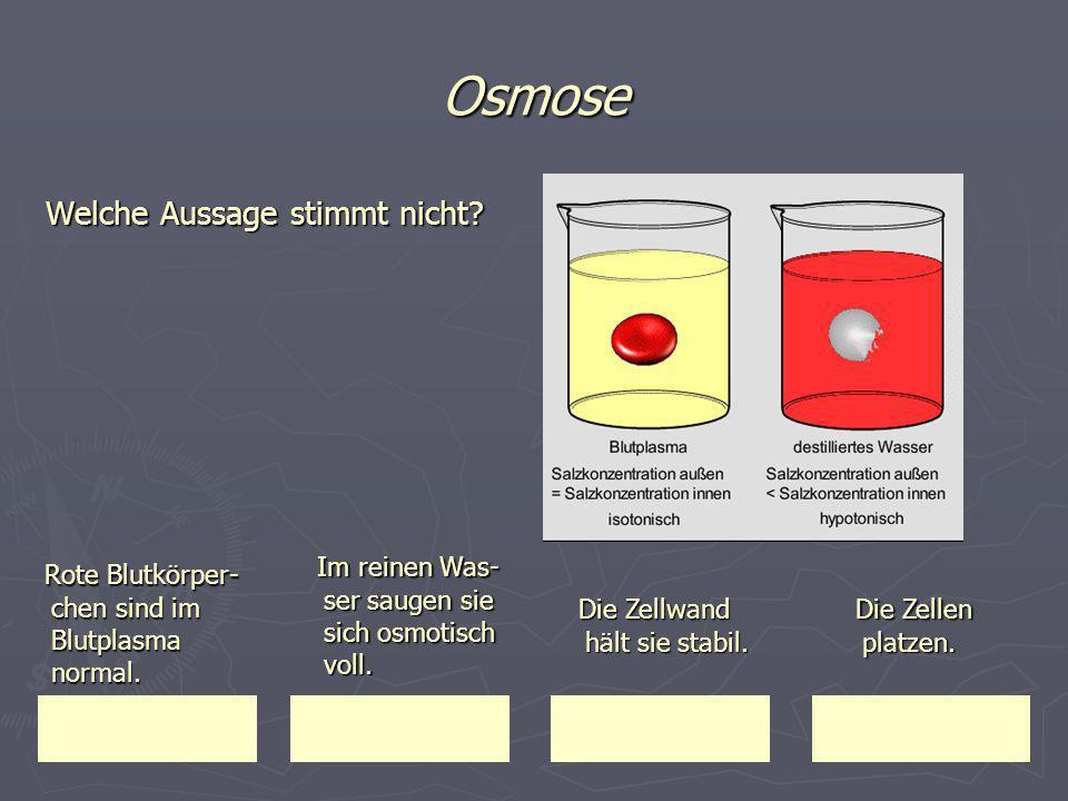 Osmose Welche Aussage stimmt nicht? Rote Blutkörper- chen sind im Blutplasma normal. Rote Blutkörper- chen sind im Blutplasma normal. Im reinen Was- s
