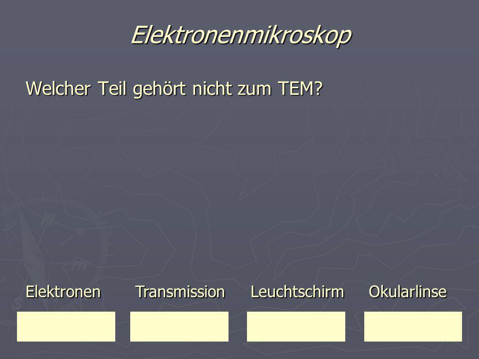 Elektronenmikroskop Welcher Teil gehört nicht zum TEM? Elektronen Transmission Leuchtschirm Okularlinse