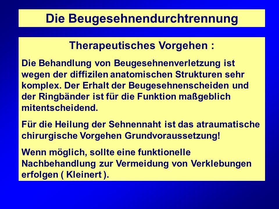 Die Beugesehnendurchtrennung Therapeutisches Vorgehen : Die Behandlung von Beugesehnenverletzung ist wegen der diffizilen anatomischen Strukturen sehr