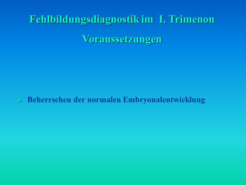 Fehlbildungsdiagnostik im I. Trimenon Voraussetzungen Beherrschen der normalen Embryonalentwicklung