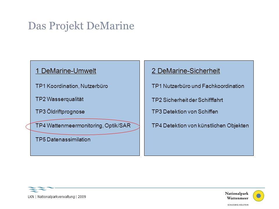 Manndränke 1634 Sea Level Rise Goes On 1362 16102 surges 1630surge 1631surge 163411.10.