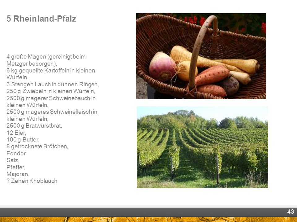 5 Rheinland-Pfalz 4 große Magen (gereinigt beim Metzger besorgen), 6 kg gequellte Kartoffeln in kleinen Würfeln, 3 Stangen Lauch in dünnen Ringen, 250