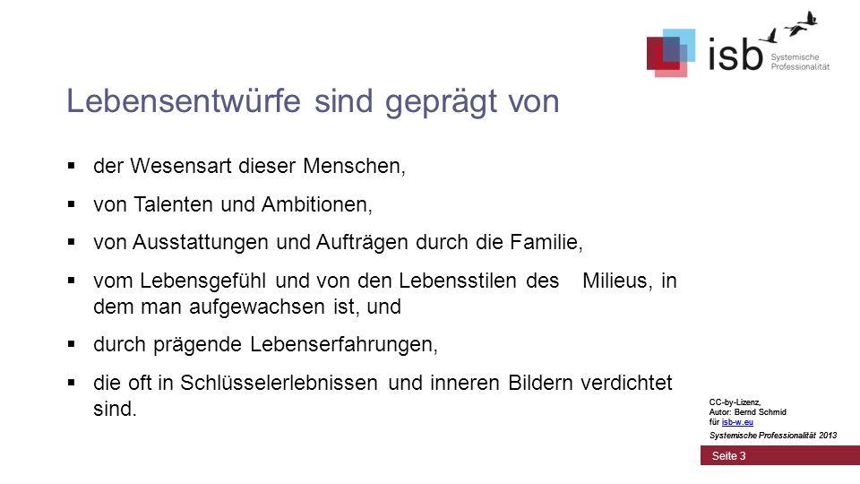 CC-by-Lizenz, Autor: Bernd Schmid für isb-w.euisb-w.eu Systemische Professionalität 2013 Seite 14 4.
