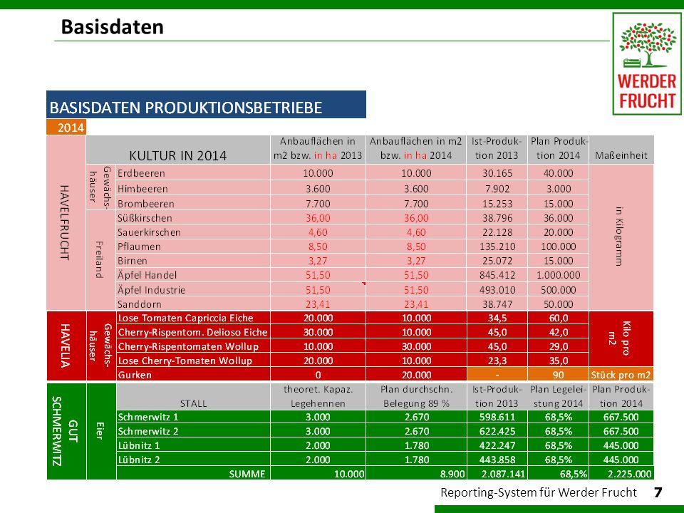 Rechendatei (Ausschnitt) 8 Reporting-System für Werder Frucht Die sehr umfangreichen Rechendateien arbeiten im Hintergrund, nur für IT- Administrator zugänglich.