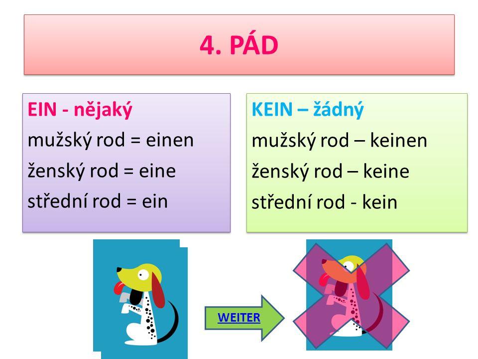 ICH MÖCHTE EINEN HUND HABEN KEIN/E (žádný) und EIN/E (nějaký) – 4. PÁD Das ist Erika. Sie hat keinen Hund. Aber sie möchte einen Hund haben. Erika bek