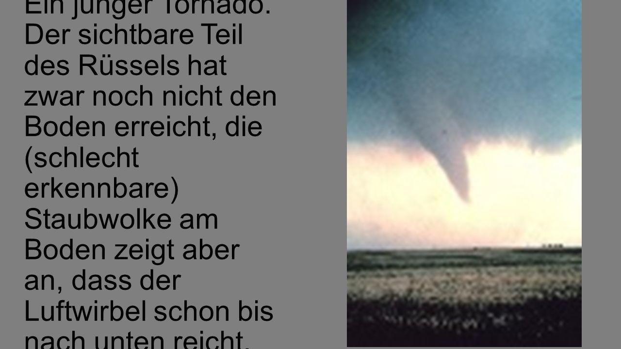 Ein junger Tornado. Der sichtbare Teil des Rüssels hat zwar noch nicht den Boden erreicht, die (schlecht erkennbare) Staubwolke am Boden zeigt aber an