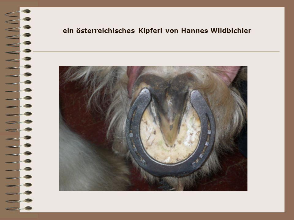 ein österreichisches Kipferl von Hannes Wildbichler
