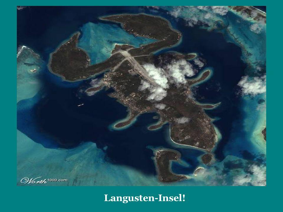 Langusten-Insel!