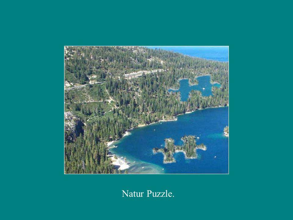 Natur Puzzle.