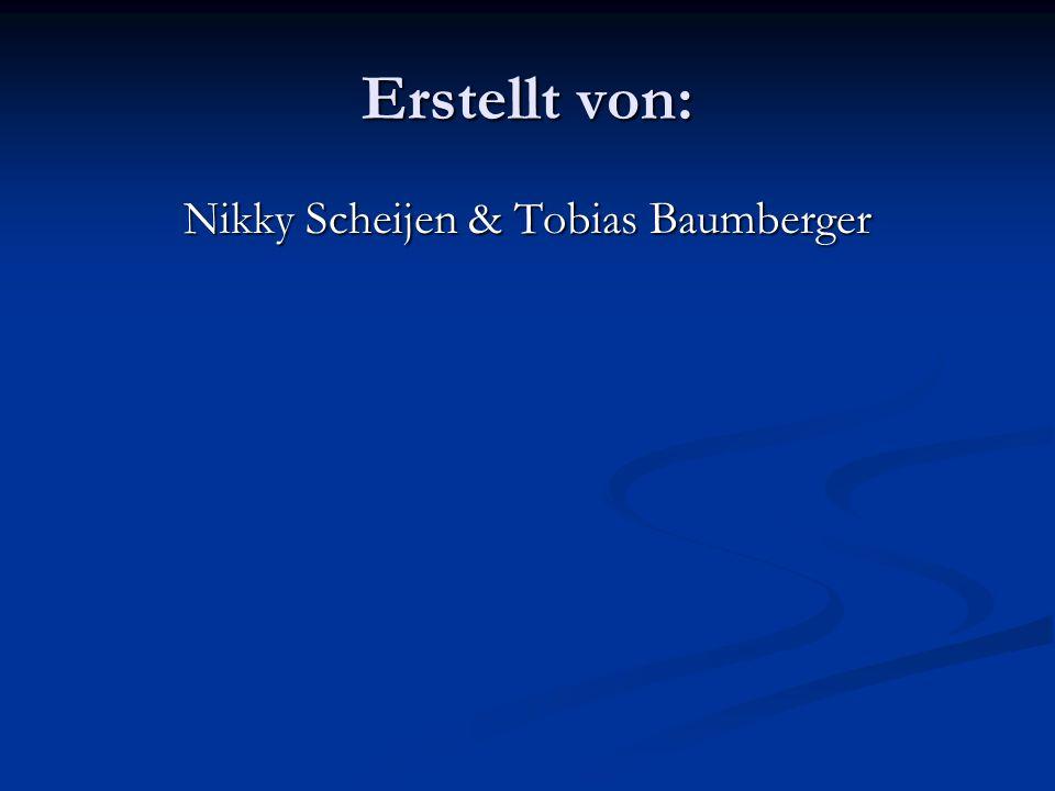 Erstellt von: Nikky Scheijen & Tobias Baumberger