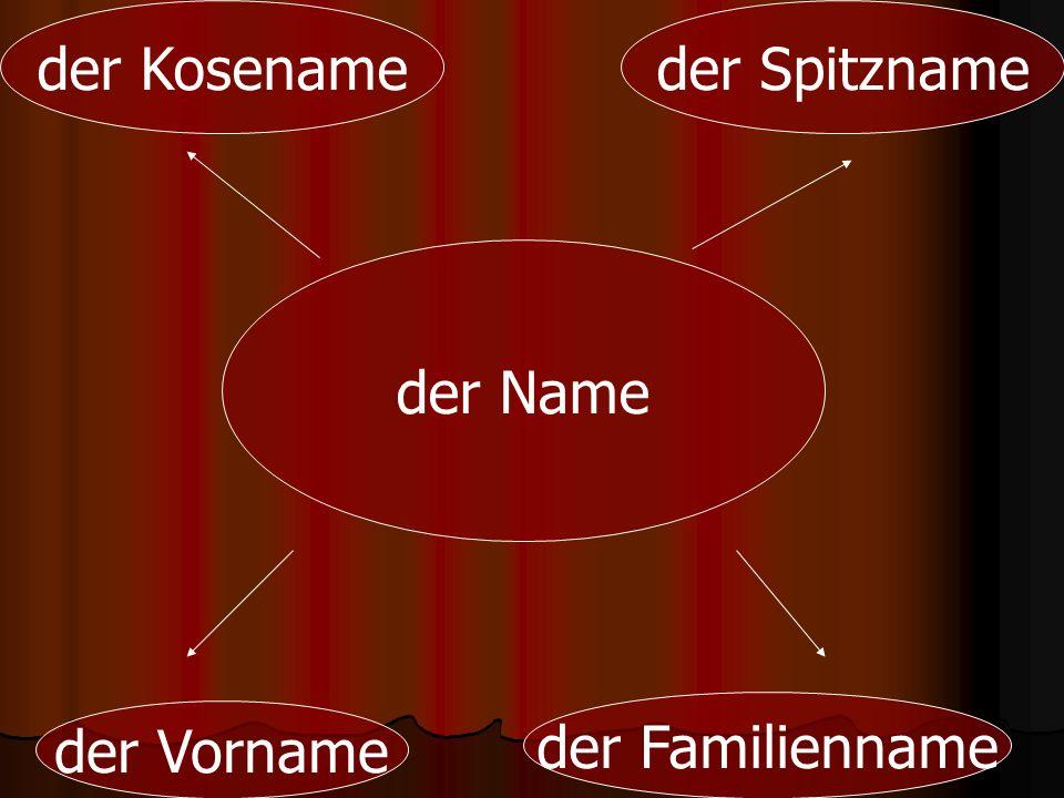 der Name der Vorname der Familienname der Kosenameder Spitzname