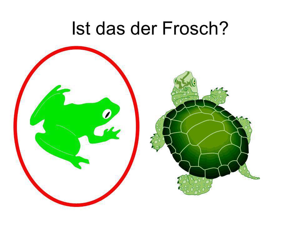 Ist das der Frosch? Ja!