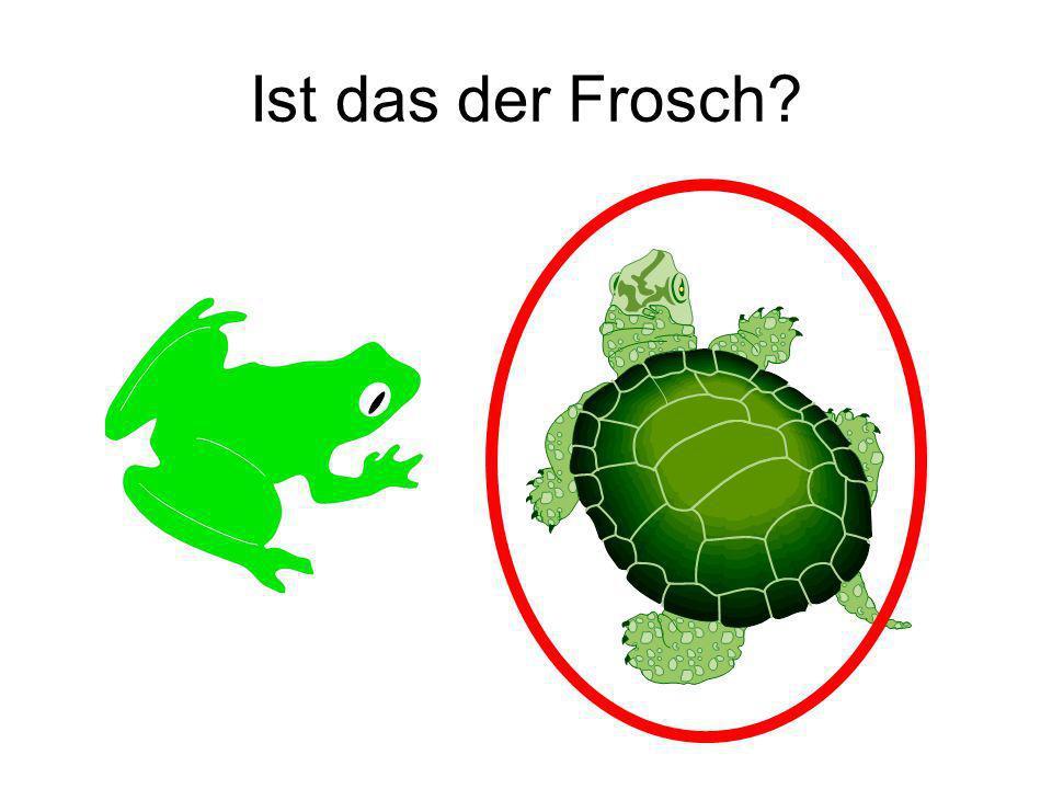 Ist das der Frosch? Nein!