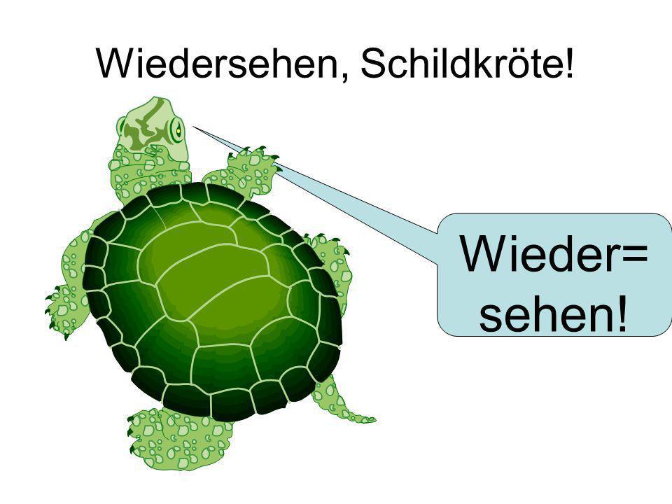 Wiedersehen, Schildkröte! Wieder= sehen!