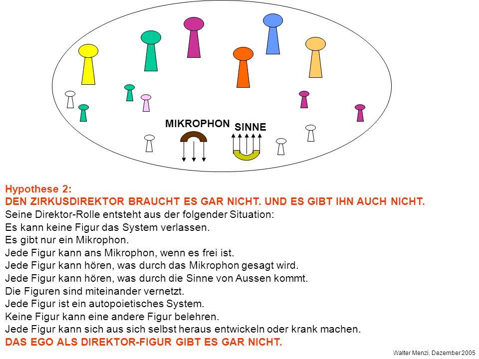 MIKROPHON SINNE Hypothese 2: DEN ZIRKUSDIREKTOR BRAUCHT ES GAR NICHT.