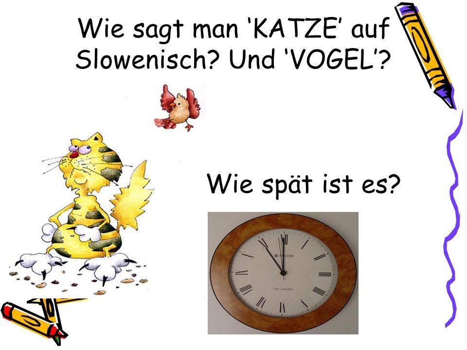 Wie sagt man KATZE auf Slowenisch? Und VOGEL? Wie spät ist es?