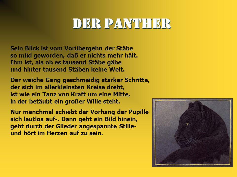 Der Panther Der Panther Sein Blick ist vom Vorübergehn der Stäbe so müd geworden, daß er nichts mehr hält. Ihm ist, als ob es tausend Stäbe gäbe und h
