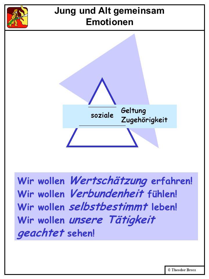 © Theodor Bross soziale Geltung Zugehörigkeit Wir wollen Wertschätzung erfahren! Wir wollen Verbundenheit fühlen! Wir wollen selbstbestimmt leben! Wir