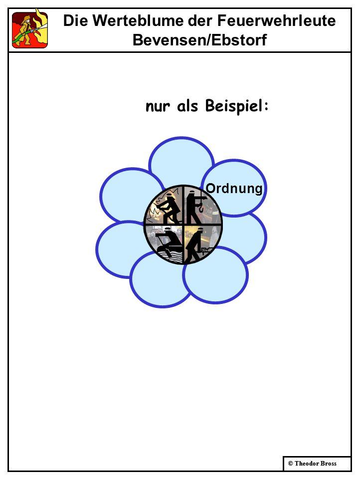 © Theodor Bross Die Werteblume der Feuerwehrleute Bevensen/Ebstorf Ordnung Werte nur als Beispiel: