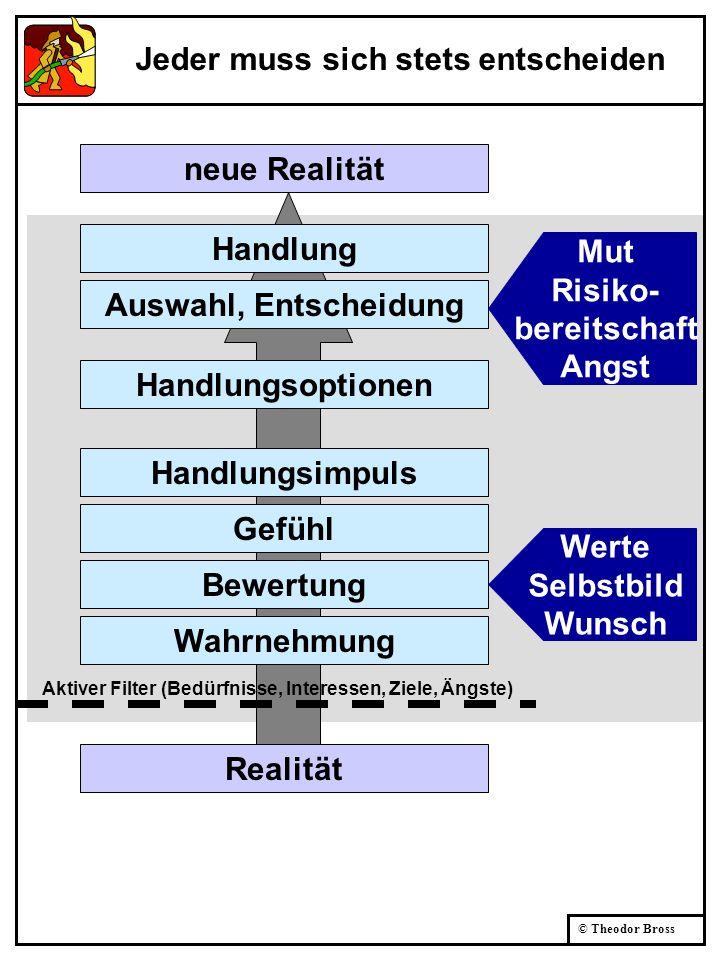 © Theodor Bross Realität Aktiver Filter (Bedürfnisse, Interessen, Ziele, Ängste) Handlung Auswahl, Entscheidung Handlungsoptionen Handlungsimpuls Gefü