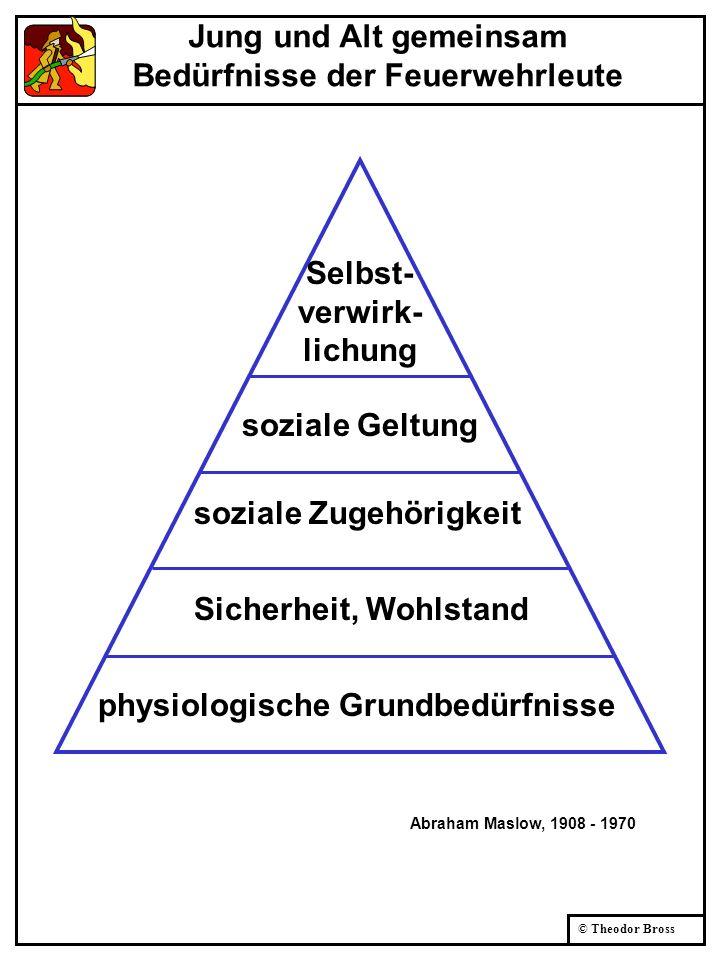 © Theodor Bross Kernpunkte der Zusammenarbeit Es geht nicht ohne: gemeinsamen Zweck Warum machen wir das.