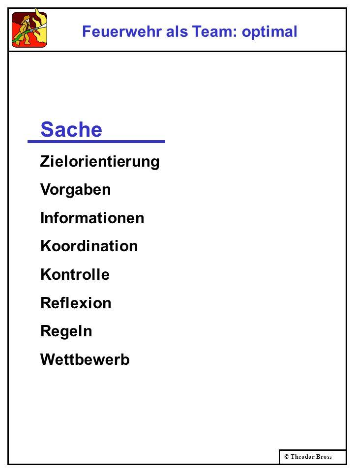 © Theodor Bross SacheBeziehung ZielorientierungUnterstützung VorgabenFreiräume InformationenFragen KoordinationGemeinsamkeiten KontrolleVertrauen Refl