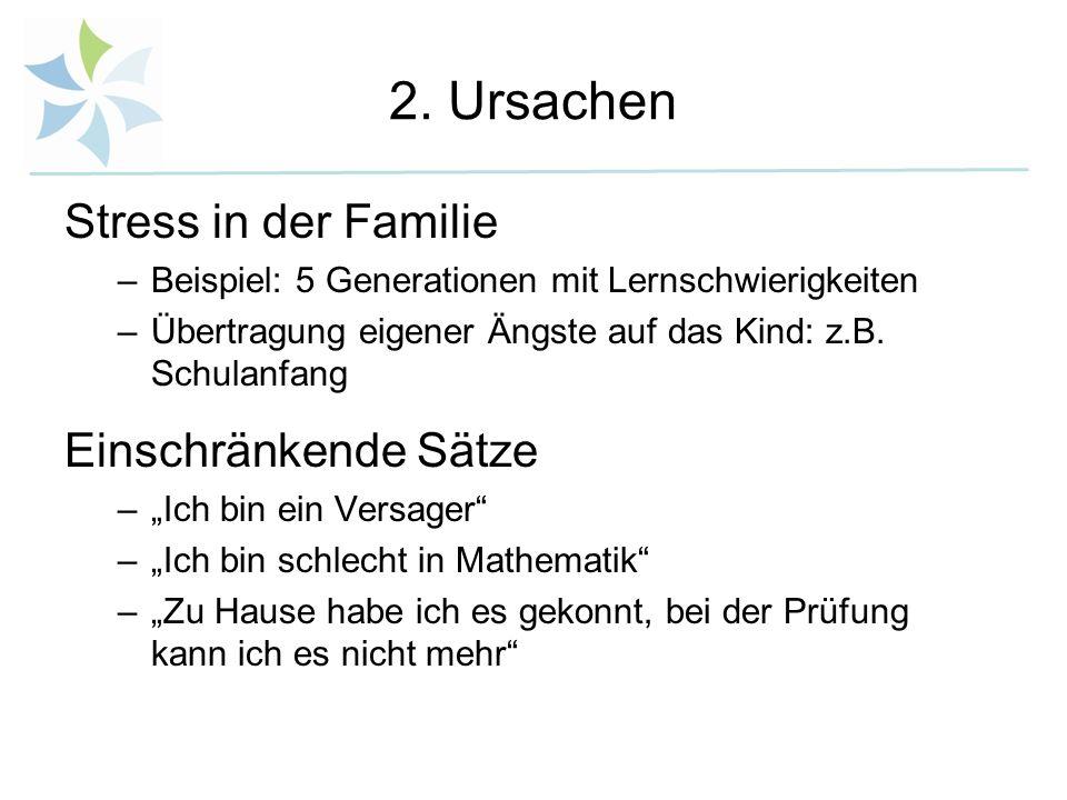 2. Ursachen Stress in der Familie –Beispiel: 5 Generationen mit Lernschwierigkeiten –Übertragung eigener Ängste auf das Kind: z.B. Schulanfang Einschr