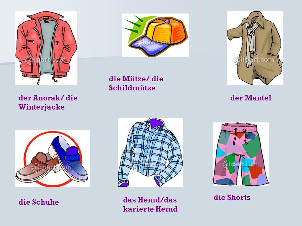 der Anorak/ die Winterjacke die Schuhe das Hemd/das karierte Hemd die Mütze/ die Schildmütze der Mantel die Shorts