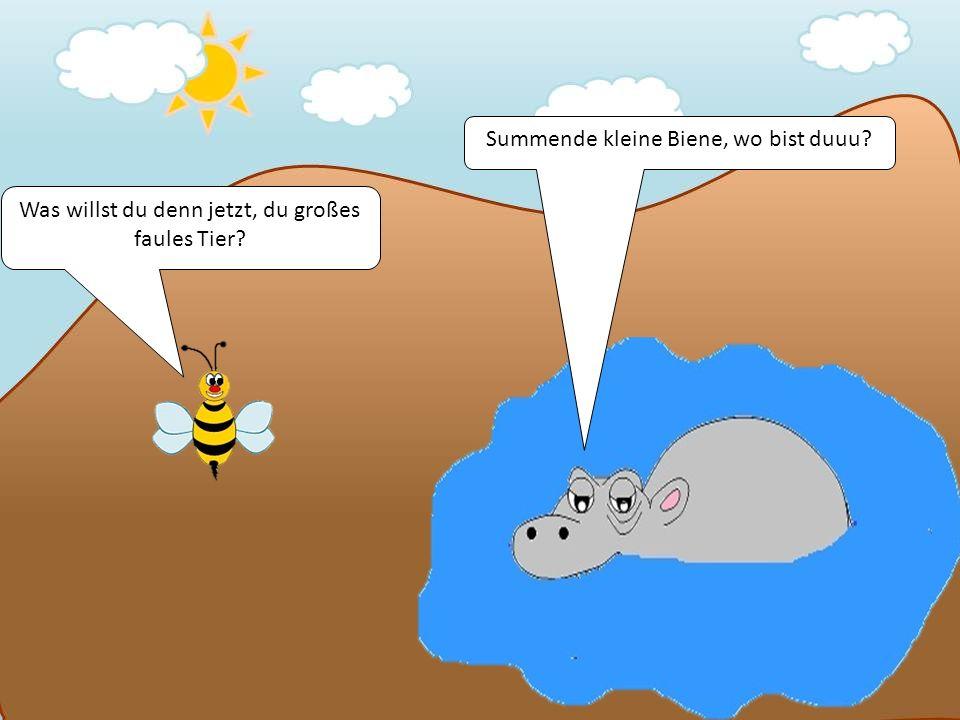 Was willst du denn jetzt, du großes faules Tier? Summende kleine Biene, wo bist duuu?